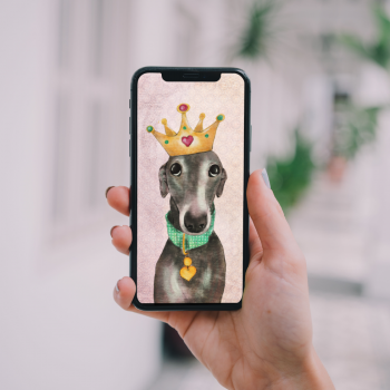 Queen Flora Phone Wallpaper